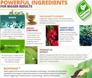 zyntix ingredients