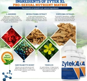 Zytek xl ingredients