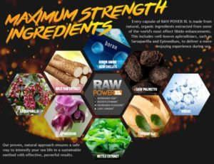 Raw Power XL Ingredients